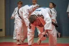 Judo-Erwachsen-12-min