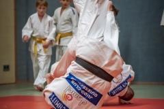 Judo-Erwachsen-13-min