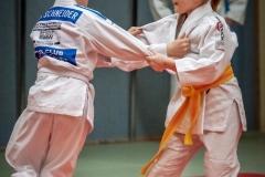 Judo-Erwachsen-30-min