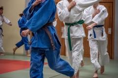 Judo-Erwachsen-7-min