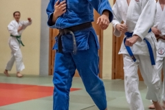 Judo-Erwachsen-8-min