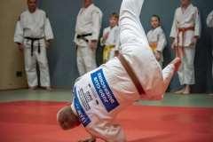 Judo-Erwachsen-9-min